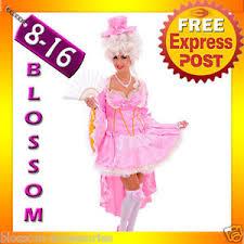 Marie Antoinette Halloween Costumes J42 Pink Marie Antoinette Renaissance Masquerade Ball Dress