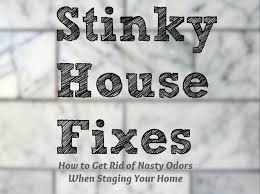 stinky house how to get rid of nasty odors when staging