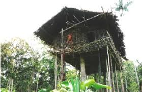 Tree Houses Around The World Different Homes Around The World Unusual Houses From Around The