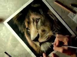 realistic colored pencil drawing lion