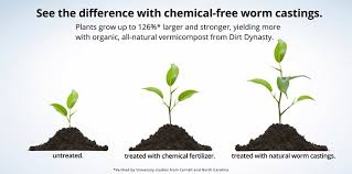 organic vermicompost uses worm castings for gardens marijuana