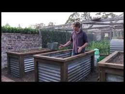 raised garden beds for sale corrugated iron vegetable garden chris francis presents a method