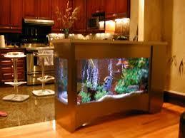 50 beautiful fish aquarium designs kerala home design and floor