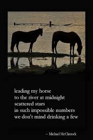 116 best poems and poets images on pinterest writers literature