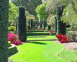 this week in the garden fall in with filoli and borrow