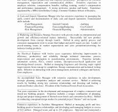 professional summary exles for resume skills summary exles for resume luxury sle resume