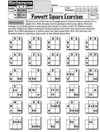 worksheets about punnett squares  punnett square exercises   with worksheets about punnett squares  punnett square exercises  from pinterestcom