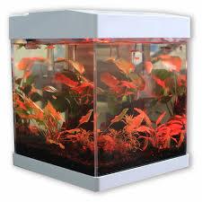 small fish tanks nano aquariums allpondsolutions