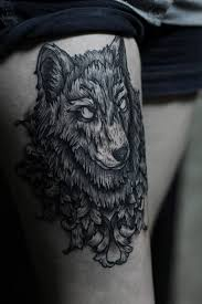 50 of the most beautiful wolf designs the has