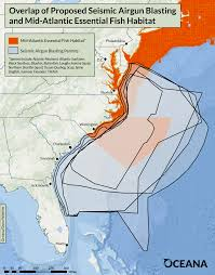 Map Of Mid Atlantic States by Maps Show At Risk Marine Life Threatened By Unnecessary Seismic