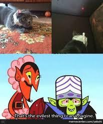 Laser Meme - laser cat by yakshi meme center