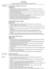marketing manager resume direct marketing manager resume sles velvet