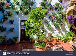 Court Yards Courtyards Festival Of Cordoba 2016 La Fiesta De Los Patios De
