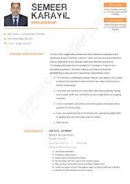 senior accountant cv semeer resume pdf new