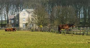 4 star holiday cottages with pool in buxton the peak district