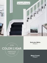 79 best 2016 paint color of the year paradise found images on