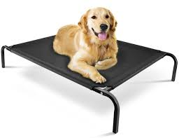 Best Dog Bed For Chewers Chew Proof Dog Bed Stunning 6 Indestructible Dog Beds For Chew