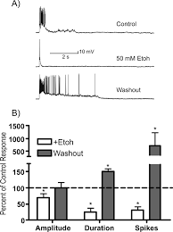 ethanol inhibits persistent activity in prefrontal cortical