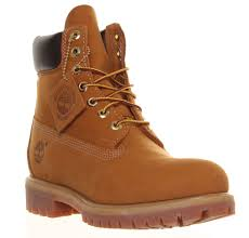 timberland 10061 mens 6 inch premium waterproof boots wheat from