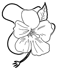 coloring pictures of hibiscus flowers hibiscus flower coloring page free printable coloring pages