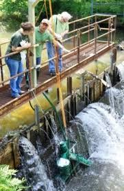 Seeking Eel Eelevator Project Helps Eels Survive Journey Through New York