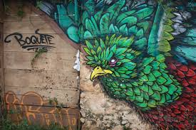 free images bird green natural freedom colorful graffiti bird green natural freedom colorful graffiti feather street art art rainforest mural spray paint exotic peafowl