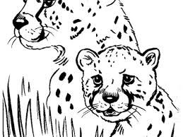 32 animal coloring pages free printable realistic jungle animal