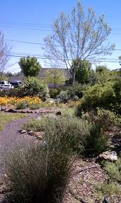 native plant nursery floral native nursery and restoration local nursery crawl