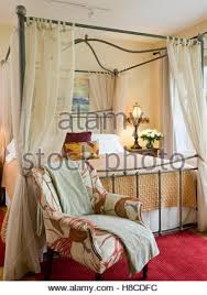 Traditional Style Bedrooms - wrought iron bed in traditional style bedroom with vibrant purple