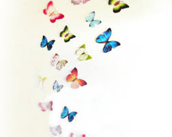 15 3D Paper Butterflies 3D Butterfly Wall Art Wall Decor