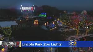 Denver Zoo Of Lights by Drone Video Captures Lincoln Park Zoo Lights Cbs Chicago