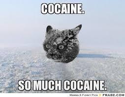 So Much Cocaine Meme - de 139 b磴sta drugs bilderna p礇 pinterest
