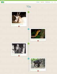 Zoo Lights Memphis Tn by La Zoo