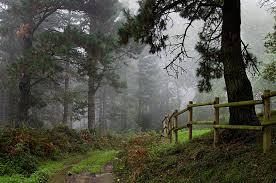 imagenes de paisajes lluviosos paisajes húmedos pentaxeros com