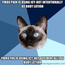 Lotion Meme - saturday 9 may 2015 meme images chronic illness cat