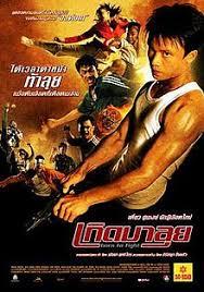 vidio film ombak born to fight 2004 film wikipedia