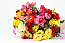 multicolored roses bouquet of multicolored roses small sprays with a heart stock