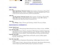 sample of resume doc creative idea resume sample doc 2 doc file of format resume