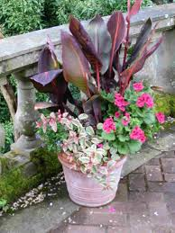 Home Garden Decoration Ideas Gallery Of Beautiful Container Garden Ideas 10 Pretty Container