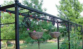 grape vine trellis photo u2013 outdoor decorations