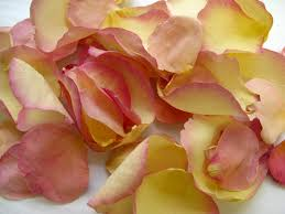 real petals the confetti decorating with petals ideas and
