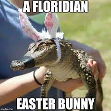 Florida Meme - florida memes florida memes added a new photo with facebook