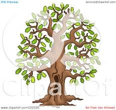 royalty free rf clipart illustration of a tall oak tree with a
