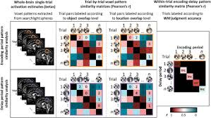 medial temporal lobe coding of item and spatial information during