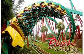 busch gardens family vacation packages tampa bay hotel deals bay harbor hotel tampa bay fl
