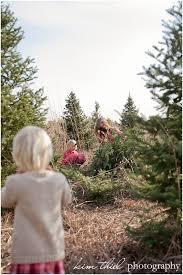 wisconsin christmas tree farm the henning family kim thiel