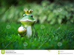 frog stock photos images u0026 pictures 33 541 images