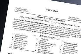 what does a professional resume look like nardellidesign com
