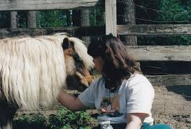 more horses to heal part 1 june 2000 laddie u0027s lesson of love