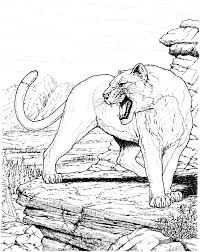 free cougar coloring pages